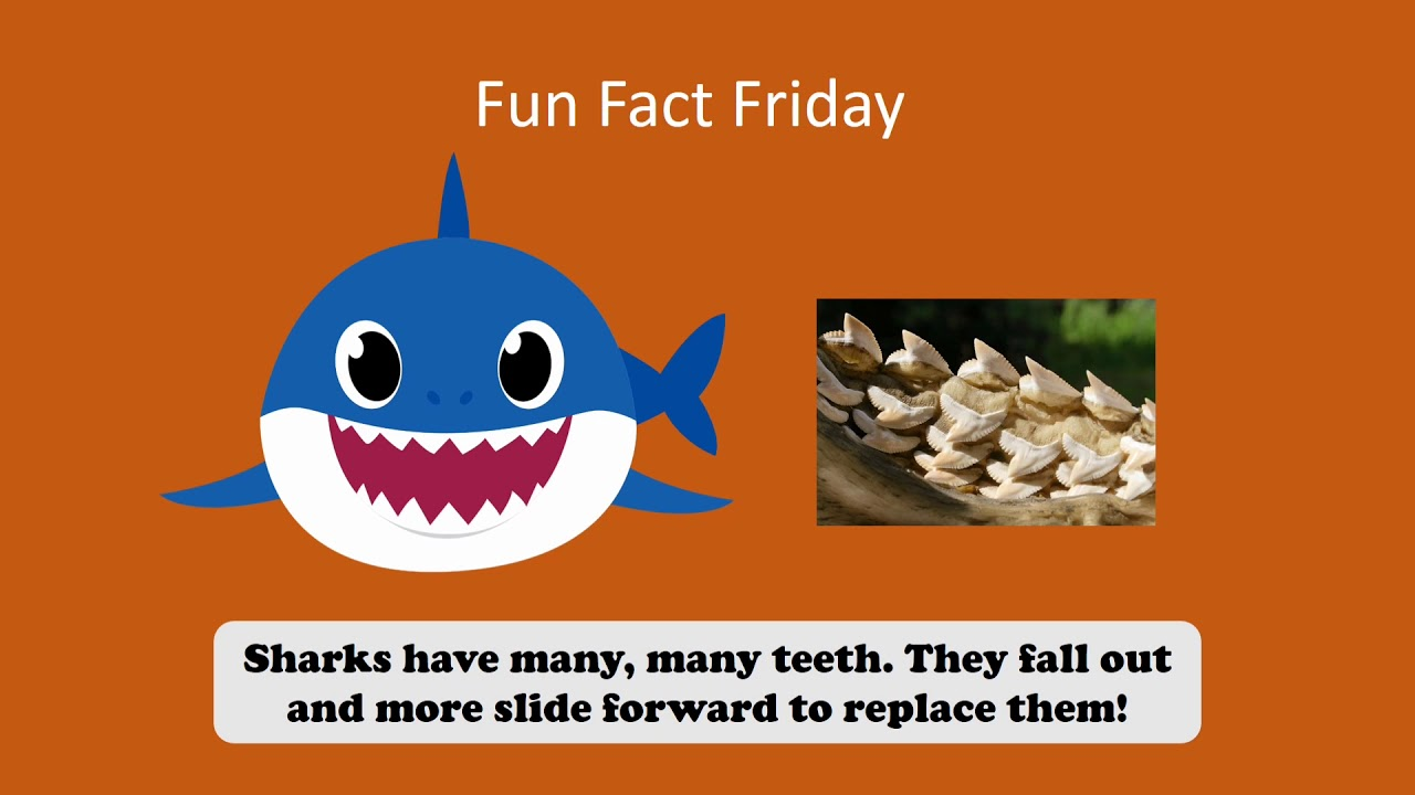 Fast Fact! 3/5/21