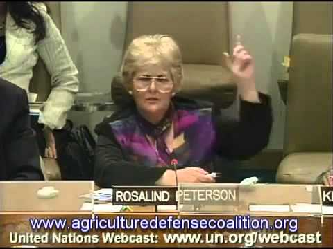 UN Debate on Chemtrails, Weather Modification, SRM