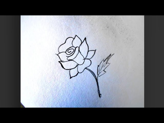 How to draw a single rose in an easy way !! Free hand drawing !!