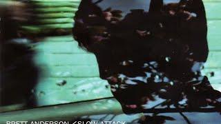 Brett Anderson - The Swans