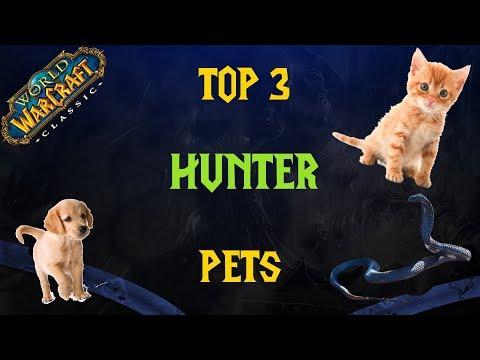 Classic Wow Top 3 Hunter Pets Youtube