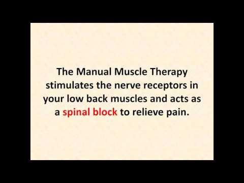 Back Pain Relief Chiropractor Largo Florida