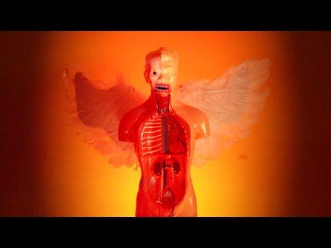 Смотреть клип Johnny Goth - Maybe It'S A Fantasy
