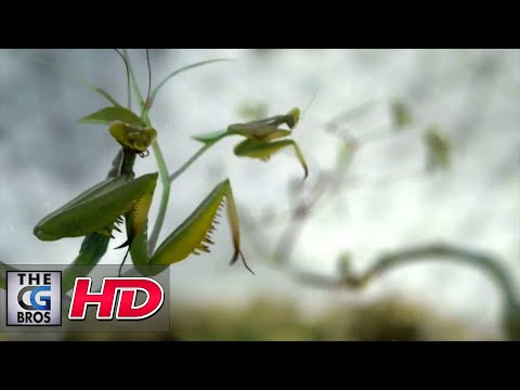 "CGI 3D Animated Spot : ""Science Channel Idents"" by - Dvein /Blacklist"
