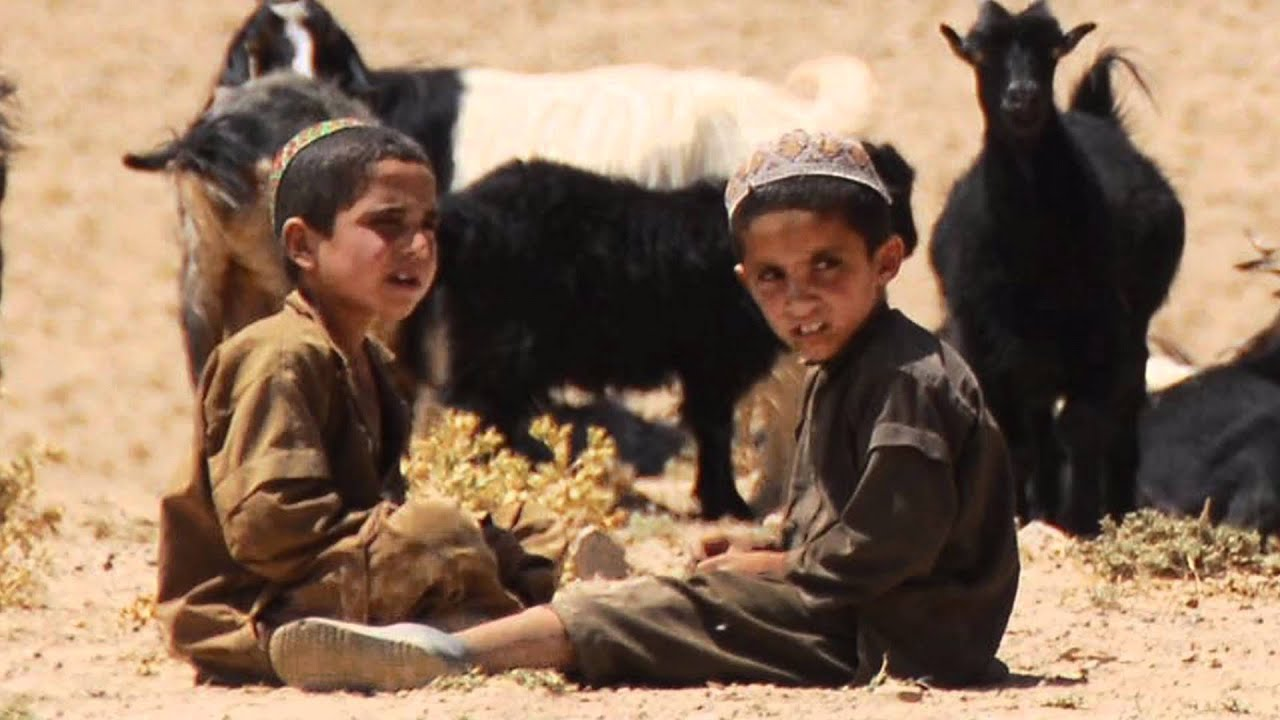 Children of war torn Afghanistan and FATA | Page 2