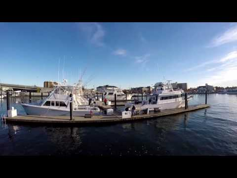 2 days of fishing on a party boat at Belmar, New Jersey