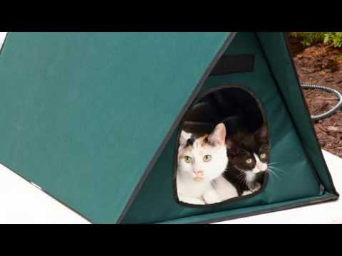 Heated Outdoor Cat House For Multiple Cats