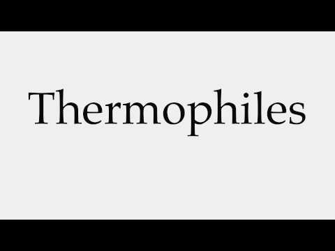 How to Pronounce Thermophiles