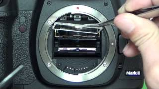 How to remove dust inside finder. (Canon 5DMarkⅡ)