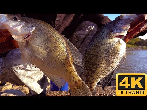 Sardis Reservoir CRAPPIE Fishing On Fire