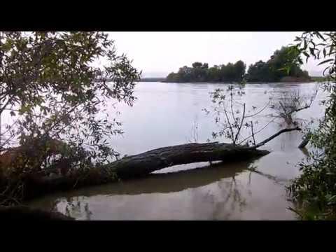 Рыбалка на реке Терек.