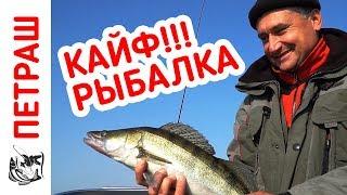 ВЫСТРЕЛ В СЕРДЦЕ!!! Рыбалка на ДЖИГ в ноябре 2018!