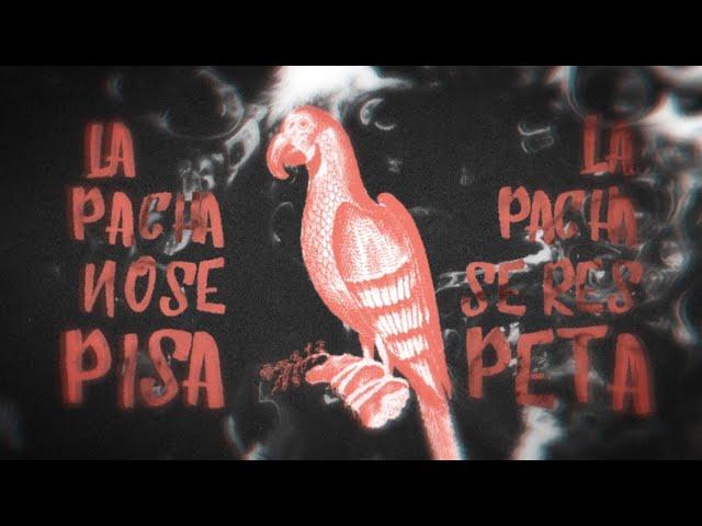 La Pacha, nuevo single de Ebri Knight