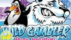 Casino Test Review: Wild Gambler Arctic Adventures