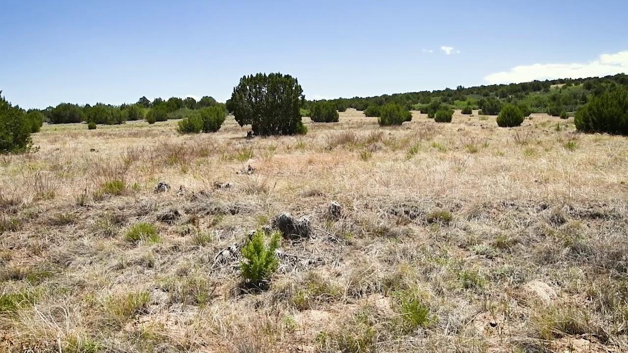 0.2 Acres – In Colorado City, Pueblo County CO