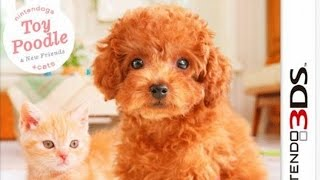 Nintendogs plus Cats Toy Poodle and New Friends Gameplay (Nintendo 3DS) [60 FPS] [1080p]