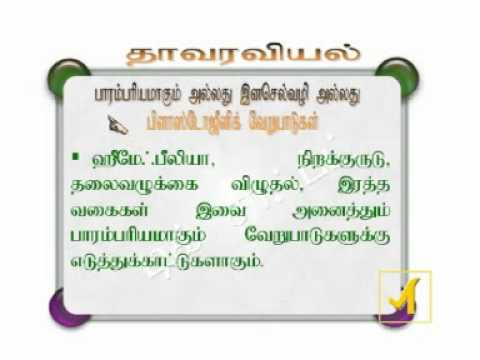 Tnpsc vao model question paper with answers in tamil 2014