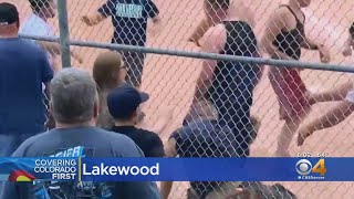 Adults Caught On Video Fist Fighting At Little League Game