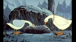 נילס הולגרסן - 37 - האווזים גנובים הילדים