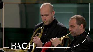 Bach - Cantata Sie werden aus Saba alle kommen BWV 65 - Rademann | Netherlands Bach Society