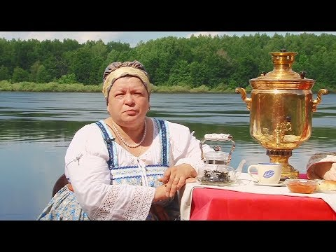 Иван-чай (кипрей) – сбор и заготовка: как собирать