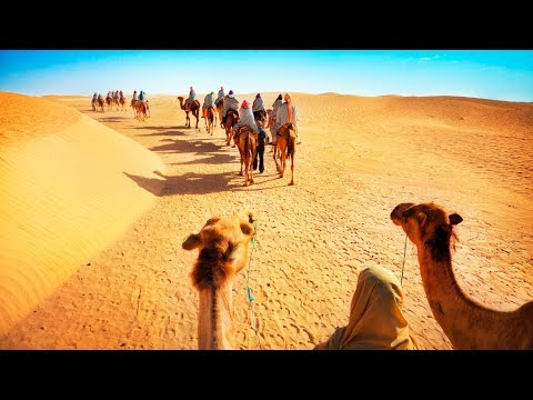 Luxury Desert Experience in Dubai: Camel Safari with Dinner and Emirati Activities