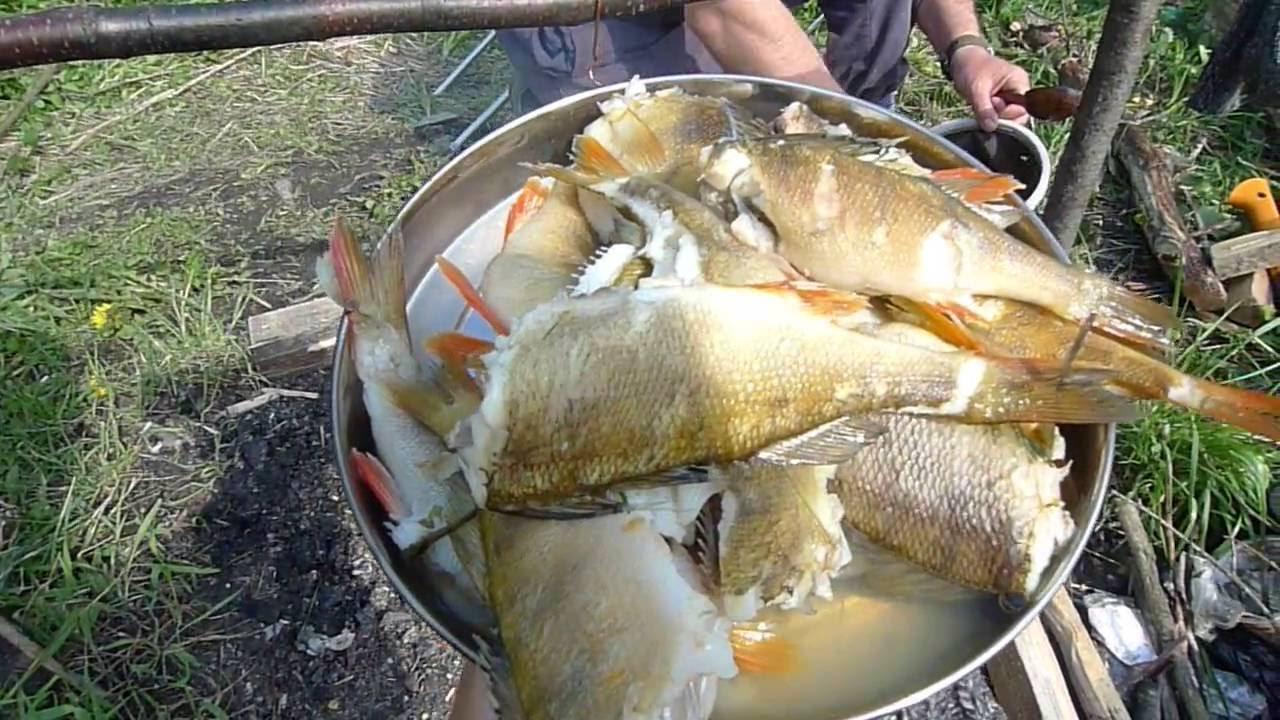озеро вуокса рыбалка в мае