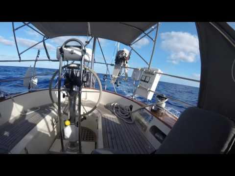 Bermuda2016 Long