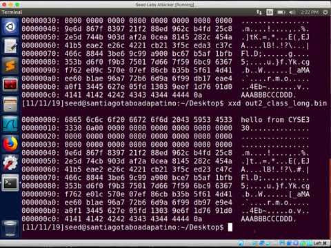 Seed Labs: MD5 Collision Attack
