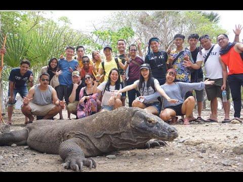 VLOG #5 Day 2 - Pulau Komodo, Labuan Bajo, Flores, NTT