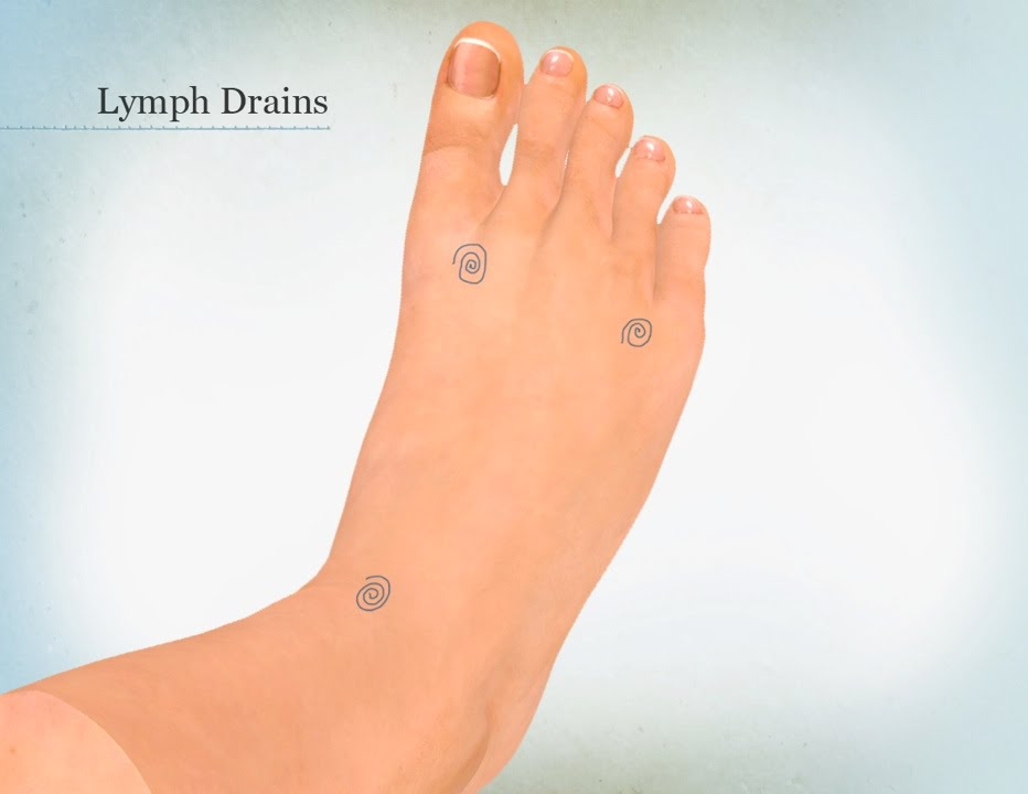 Foot Zone Therapy Therapy Area 1 Lymph Drains Drawing Youtube