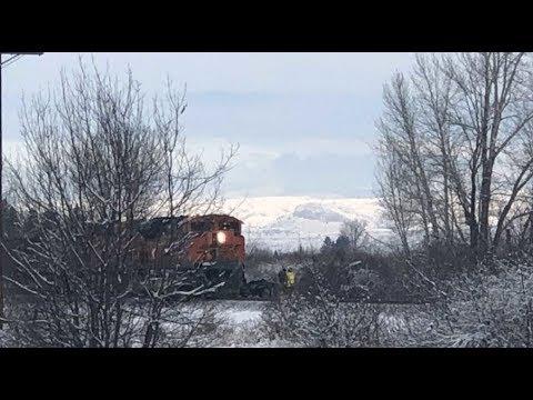 Man killed when train hits vehicle