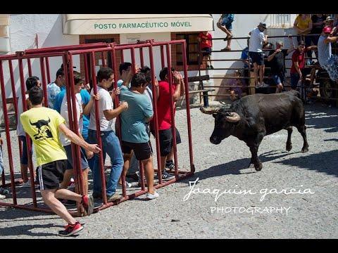 touro na rua sao bartolomeu outeiro 2017