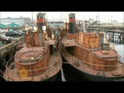 War on whaling