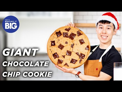I Made A Giant 20-Pound Chocolate Chip Cookie • Tasty