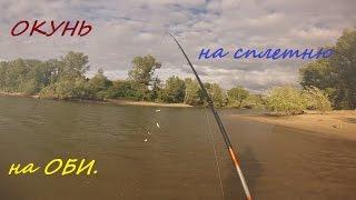 Рыбалка сплетней на окуня на Оби. Окунь на мушку. Июль2015.