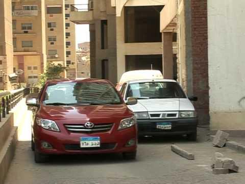 Carpooling, for a greener Cairo