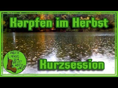 Auf Karpfen im Herbst - Kurzsession am Wasser