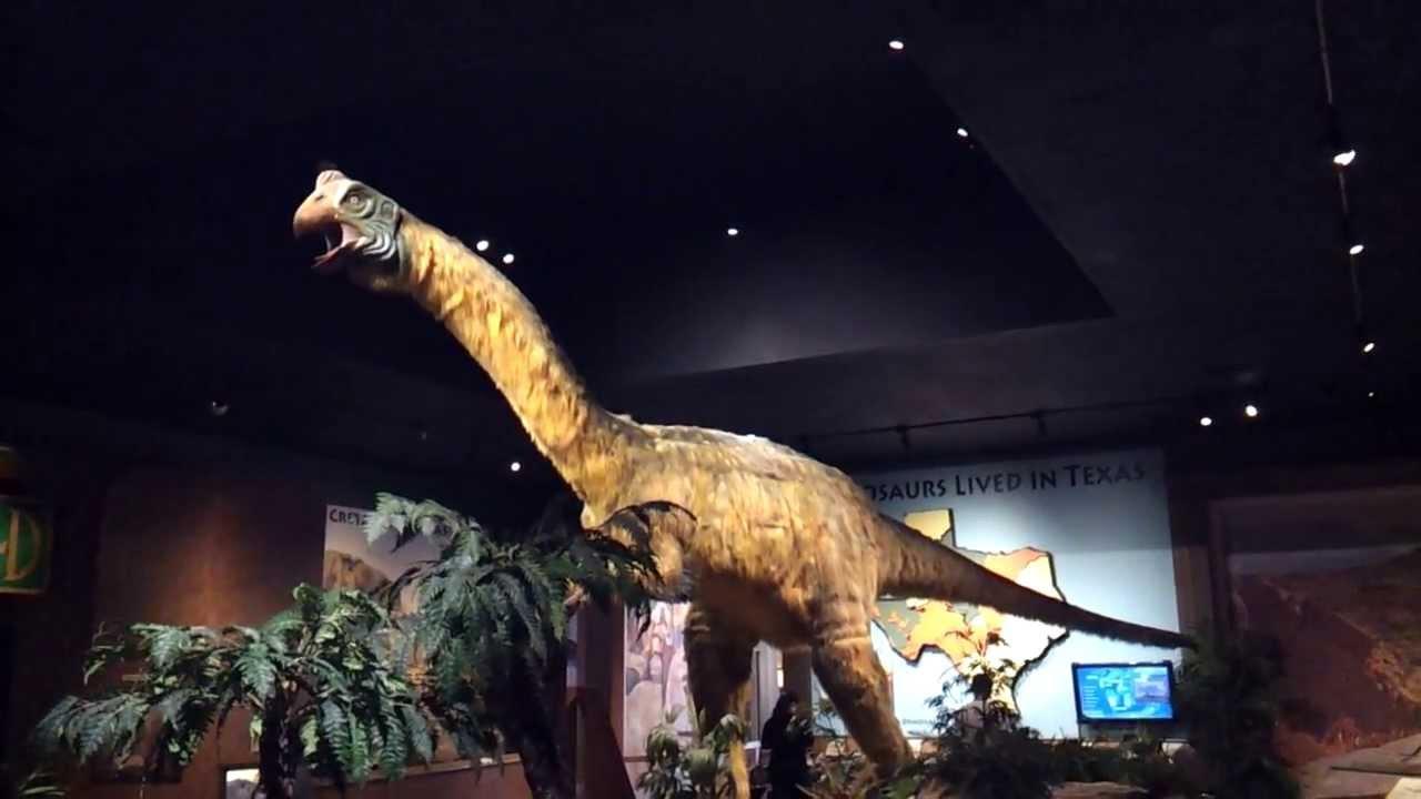 1280 x 720 jpeg 58kBBrachiosaurus
