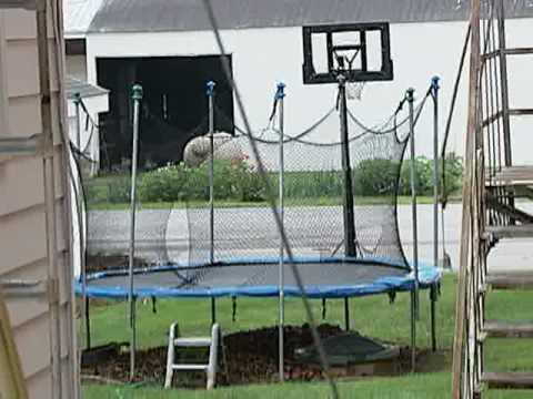 Delaware woman dies of rare case of rabies