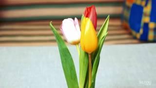 Лайфхак #35 Как сделать, чтобы цветы дольше стояли(, 2017-01-08T16:46:03.000Z)