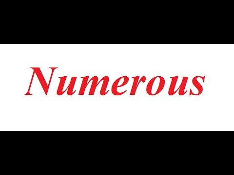 Numerous: Correct Pronunciation and Synonyms