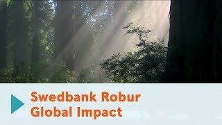 Swedbank Robur Global Impact