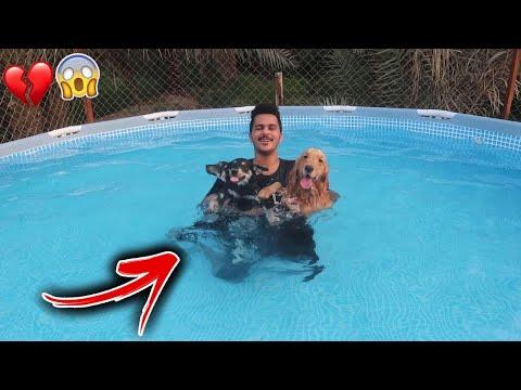رميت عيال لوسي في مسبح عميق لاول مرة في حياتهم !!
