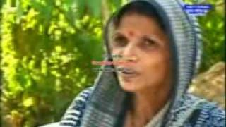 Environment activities Tree Mother in DD National Report- Urmila Behera