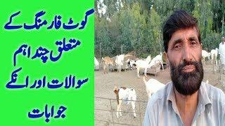 Goat Farming | goat Farming business | goat Farming in Pakistan | goat farm tips