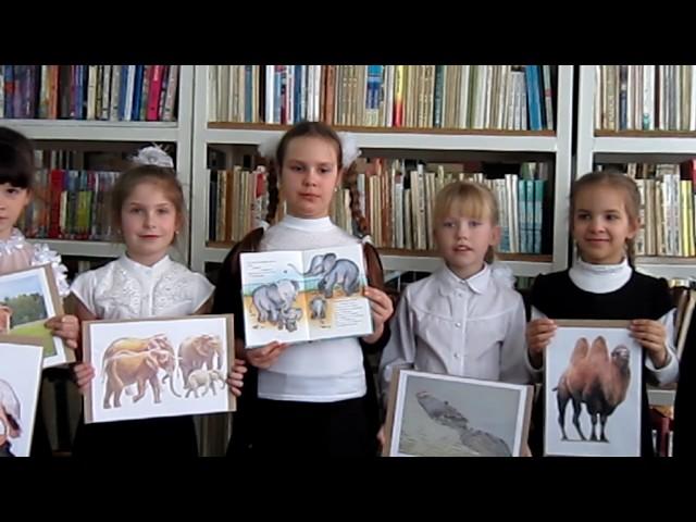 Изображение предпросмотра прочтения – ТатьянаМалышева читает произведение «Что ни страница, — то слон, то львица» В.В.Маяковского