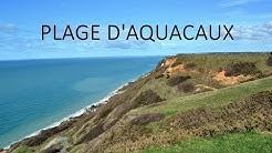 🐶 TOUTOU VADROUILLE :  EN NORMANDIE ♥ 🐾  - #1 Plage d'Aquacaux (Octeville-sur-Mer 76) (PART I)