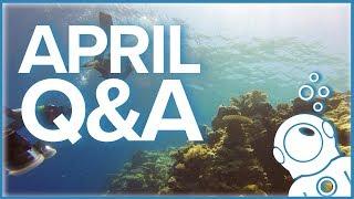 Simply Scuba Q\u0026A - April