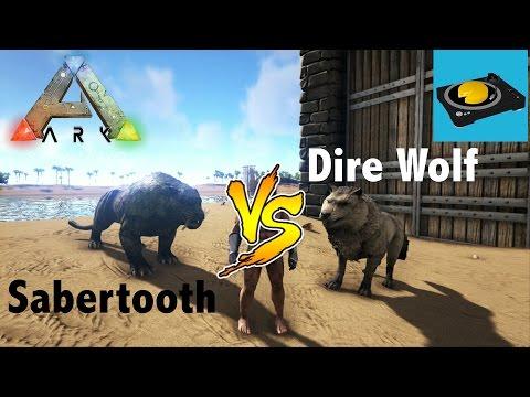 ARK INSIGHT!!!  Sabertooth VS Dire Wolf!!